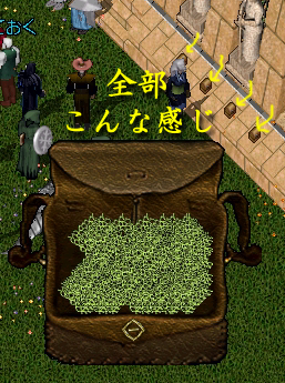20060707_04.png